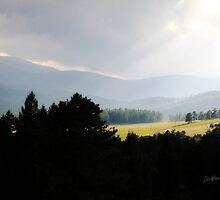Sun After the Storm, Hangen Ranch, Evergreen, Colorado by Christina Macaluso Hammock