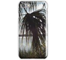 Halifax River Palm iPhone Case/Skin