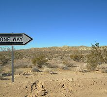 one way, in the middle of the desert????? by Lorin Richter