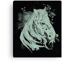 millenium horse Canvas Print