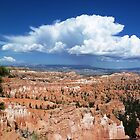 Spectacular Hoodoos, Bryce Canyon National Park by TracyS