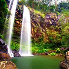 Twin Falls - Springbrook National Park by Adam Gormley