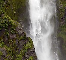 Stirling Falls, Milford Sound, New Zealand by Vickie Burt
