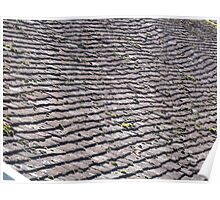 Shingles on a roof  - 1 Poster