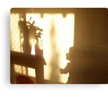 Shadow Play - child Canvas Print