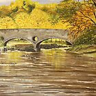 Cenarth Bridge by Annie Lovelass