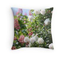 White bush rose Throw Pillow