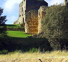 Ravenscraig Castle by GillBell