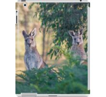 Curious kangaroos iPad Case/Skin