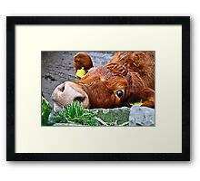 What did you say? Framed Print