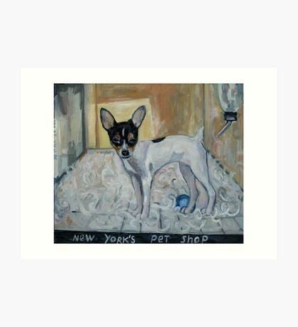 """dog from New York"" Art Print"