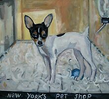 """dog from New York"" by Nataliya Stoyanova"