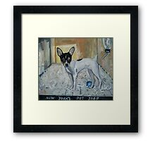 """""""dog from New York"""" Framed Print"""