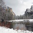 Yosemite by Fran0723