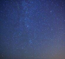 Perseid Meteor Shower by FOTIS MAVROUDAKIS