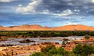 Water in the desert by Rudi Venter