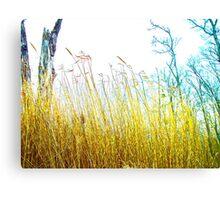 Tall Grass Love Canvas Print