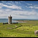 Rural Countryside Farm Scenic Nature Landscape Photography In Ireland. Doonagore Castle Doolin in County Clare. by upthebanner