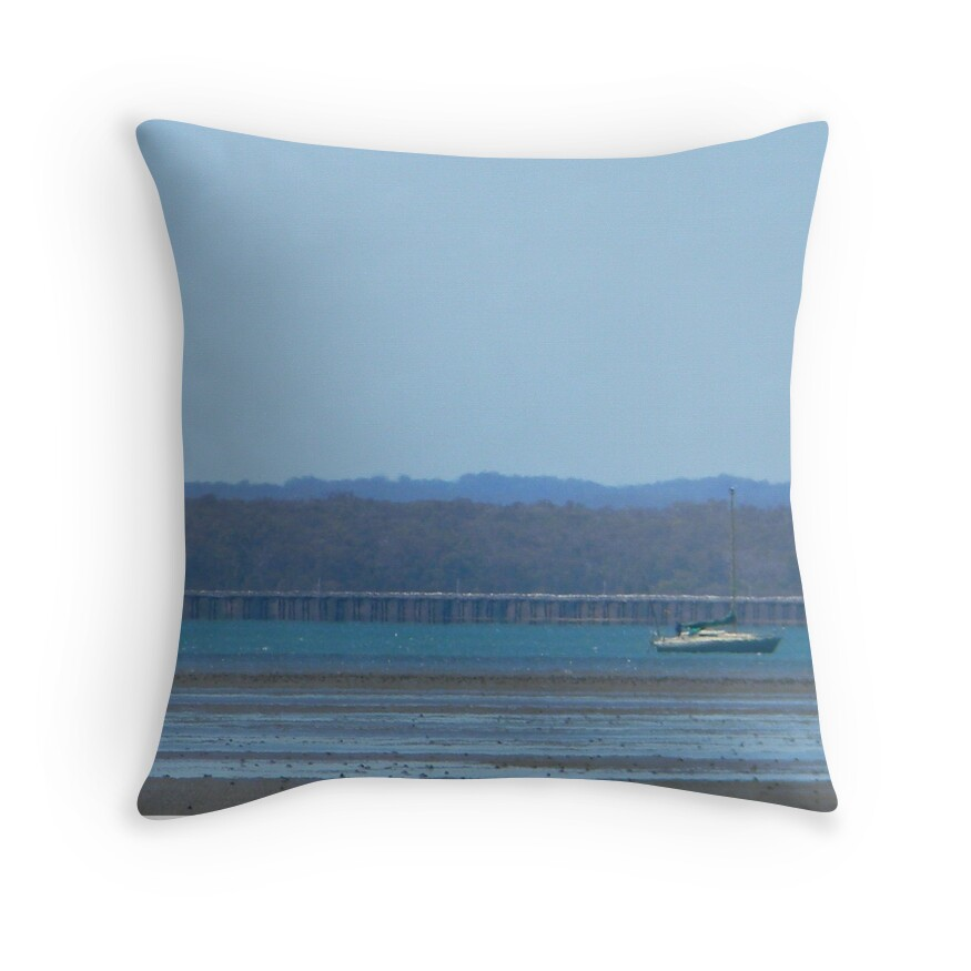 Throw Pillows At Pier One :