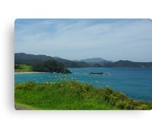 North Island New Zealand Canvas Print