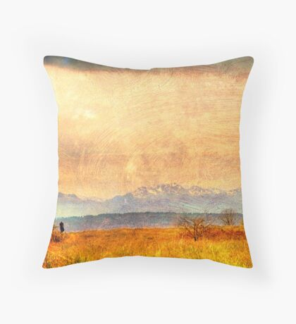 Painted Light, View from Discovery Park, Seattle Washington Throw Pillow