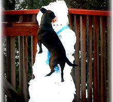 """My Snow Friend """"After"""" by Angie O'Connor"""