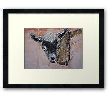 Nigerian Dwarf Dairy Goat Framed Print
