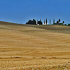 Fields of Gold  - Tuscany by vivsworld