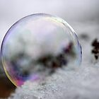 Rainbow bubbles In the Snow by Lynn  Gibbons