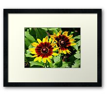 Flowers for 2!!! ©  Framed Print