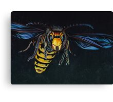 Japanese Hornet Canvas Print