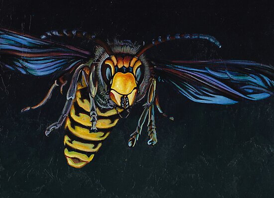 Japanese Hornet by FatEyes