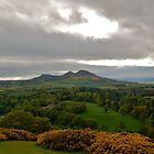 Eildon Hills, Scotland by ScottishVet
