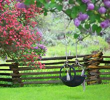The Old Tire Swing by BettyEDuncan