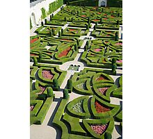 The  love garden, Chateau Villandry, Loire Valley Photographic Print