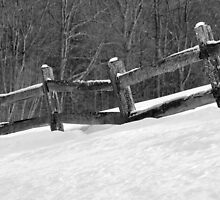 Winter by John  Kapusta