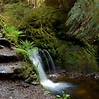 Puck's Glen Waterfall by ScottishVet