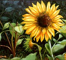 """Sunflower"" by Andy Liberto"