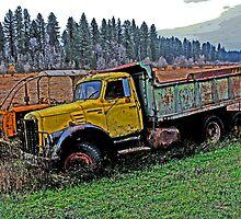 Down on the Farm 30 by Cripplefinger