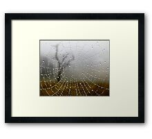 Web View Framed Print