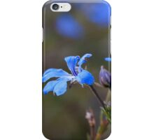 Blue Leschenaultia iPhone Case/Skin