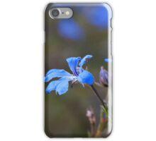 Blue Leschenaultia iPhone Case/Skin