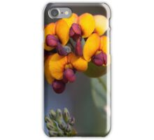 Yellow-eyed Flame Pea iPhone Case/Skin