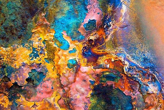 Splash   by DebraLee Wiseberg