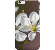 Milkmaids iPhone Case/Skin