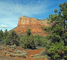 Beauty of Public Lands by Lynda Lehmann