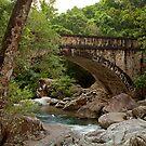 Little Crystal Creek Bridge by Lincoln Stevens