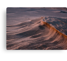 Oceano Dunes at Sunset Canvas Print