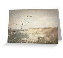 Grass on the Cliffs II Greeting Card
