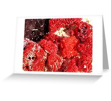 Red Coral Beach, Gili Meno, Indonesia Greeting Card